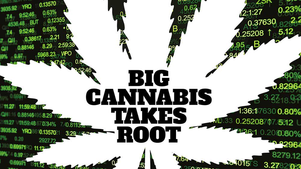 Israel Partners With Canada For Cannabis Tech Innitiative