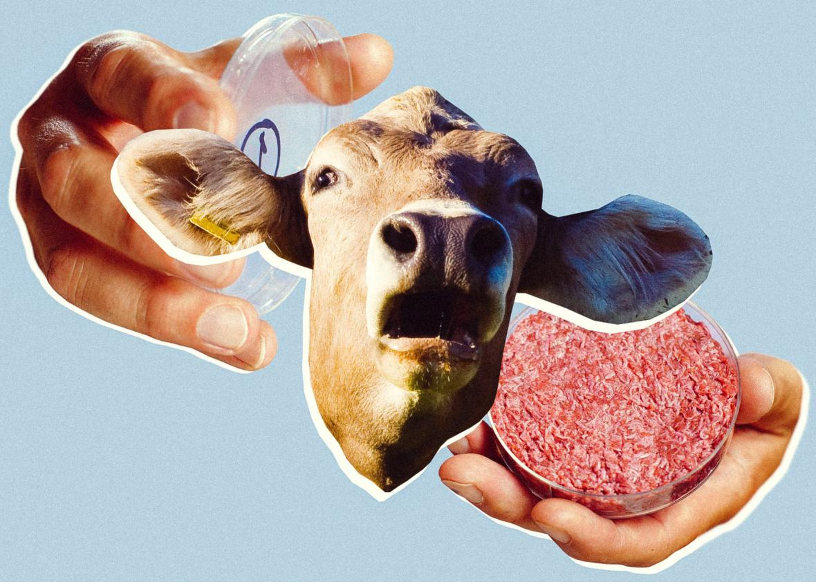 NO SLAUGHTER: Israeli Firm Creates 'Lab-Grown' Steak